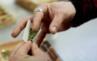 What happens in Vegas: Nevada puts pot on the menu for fun-seekers