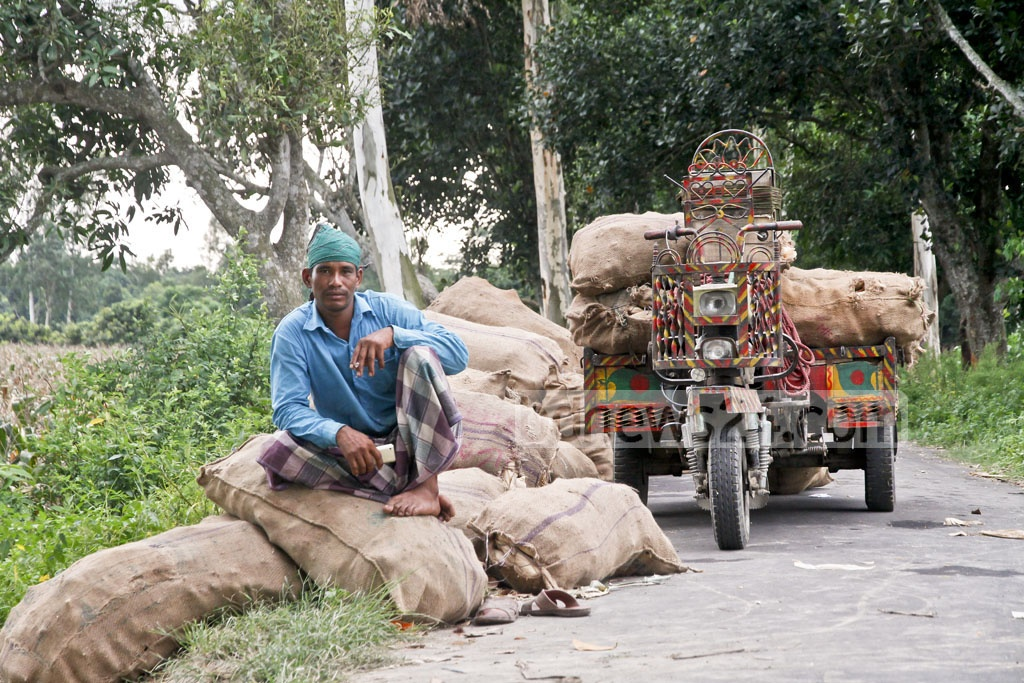 A farmer in Dinajpur's Biral poses for a photo sitting on sacks of corn before loading them onto a three-wheeler. Photo: tanvir ahammed