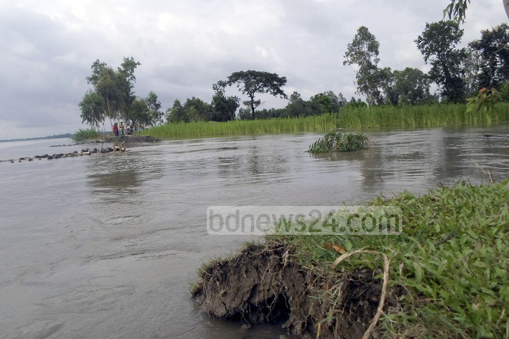 Hundreds of families in Dhubni village of Lalmonirhat's Hatibandha Upazila have become trapped by rising Teesta waters.