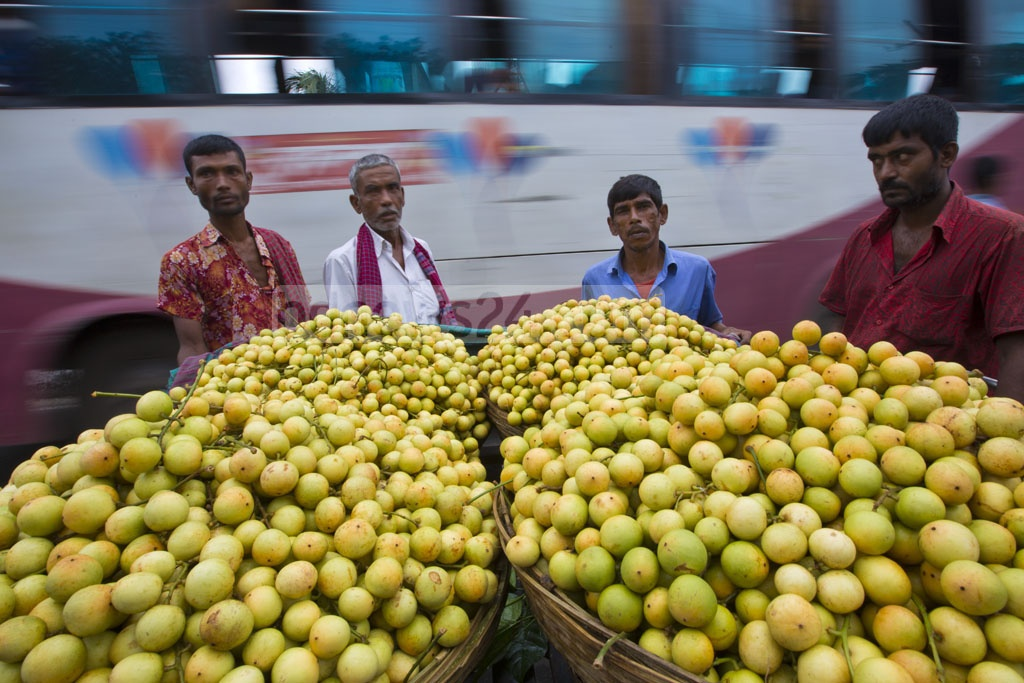 A wholesale Lotkon market sits in the morning every day in Marjal area on Dhaka-Sylhet Highway. Photo: mostafigur rahman
