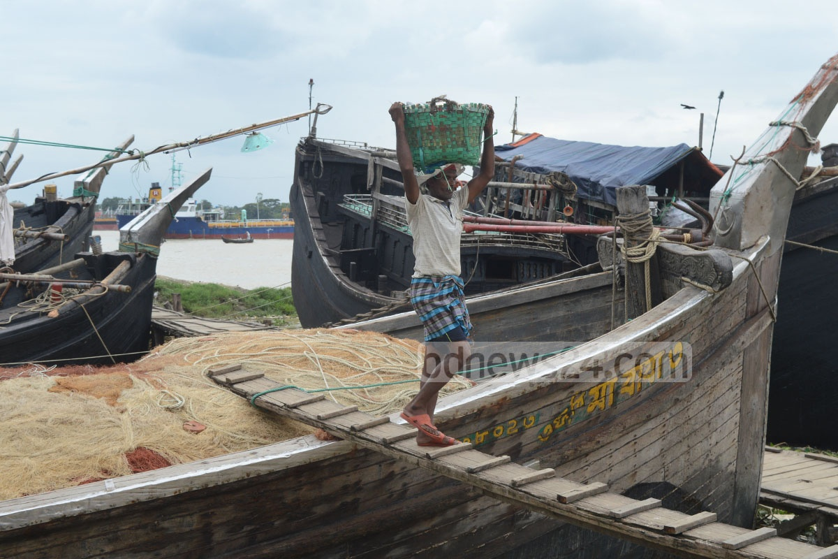 Workers unloading hilshas from boats at Chittagong's Fishery Ghat on Saturday. Photo: suman babu