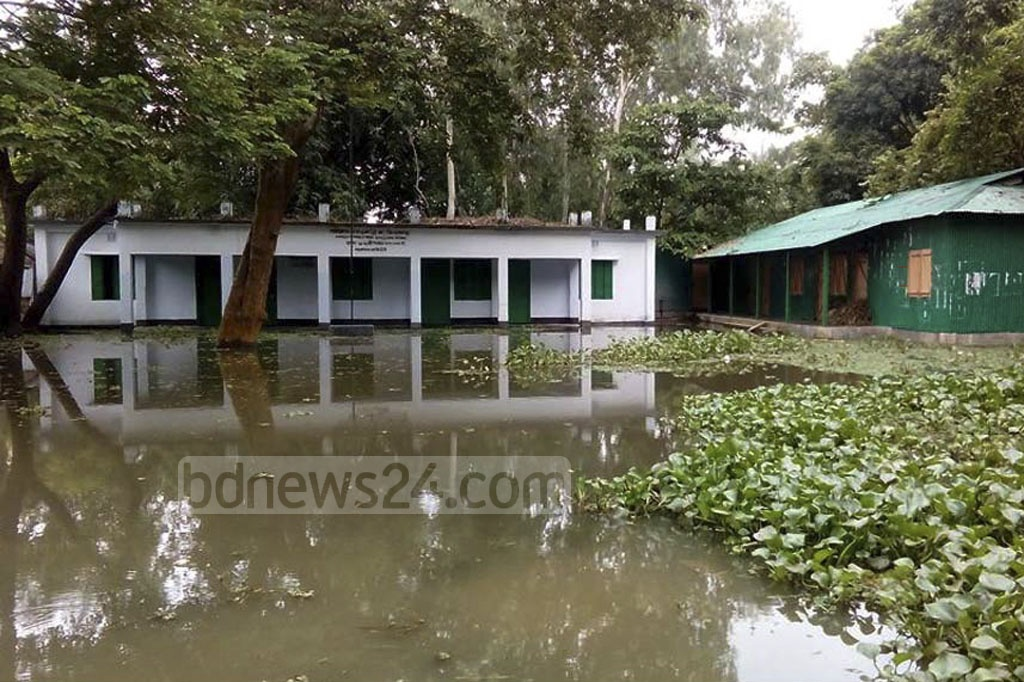 All classes of Kaiyarhat Government Primary School at Fulchharhi in Gaibandha have been suspended indefinitely as the school premises are submerged in flood water. The photo was taken on Monday.