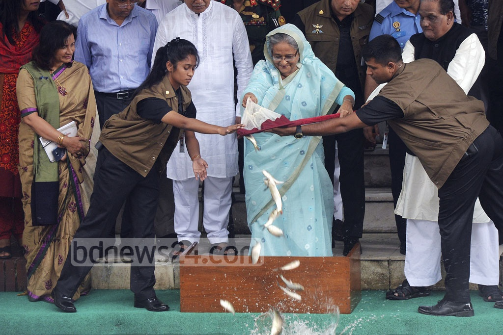 Prime Minister Sheikh Hasina releases fish fries into a lake, near her official residence Ganabhaban, to mark the National Fisheries Week 2017 on Wednesday.