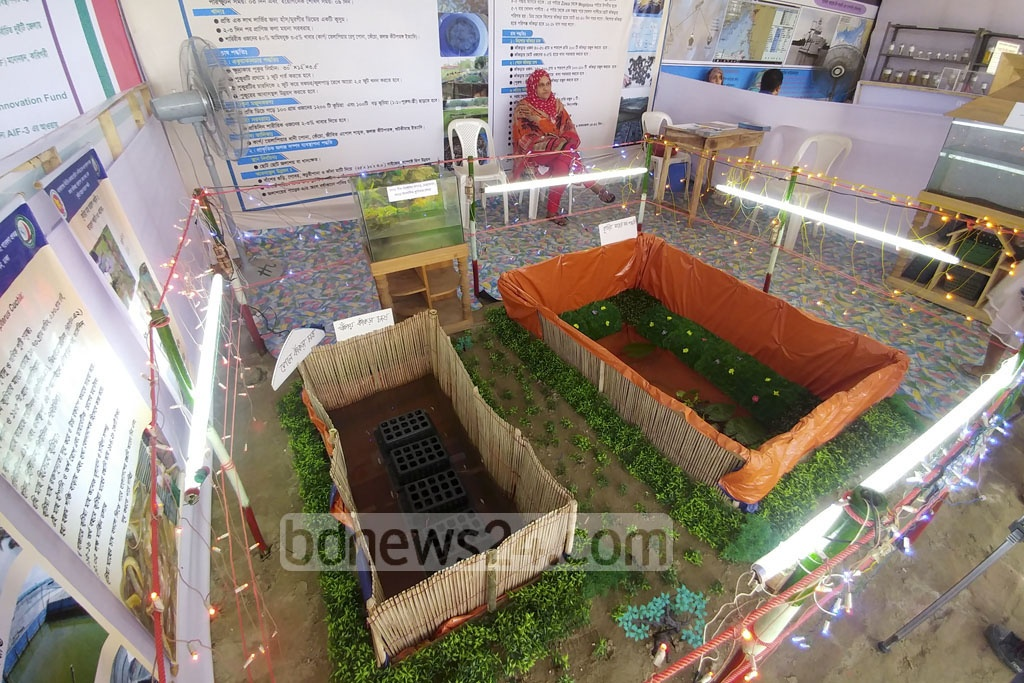 An installation displays crab farming in a stall in the Fish Fair.