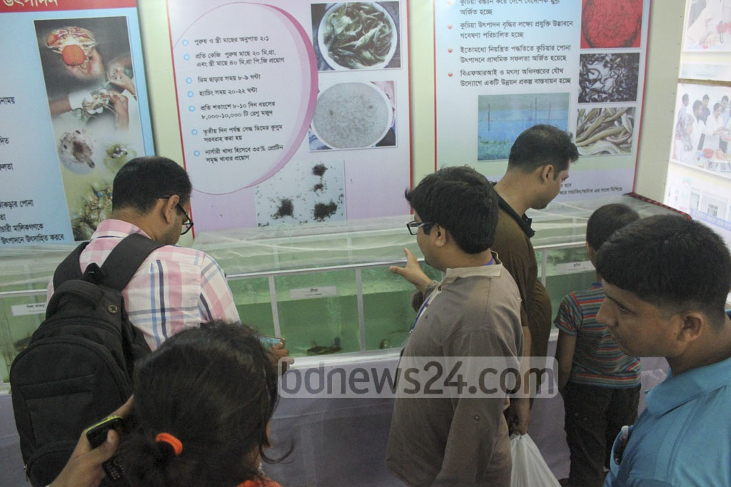 Visitors throng a stall to see different kinds of marine fishes preserved in jars at the Fish Fair.