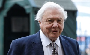 FILE PHOTO: Naturalist David Attenborough arrives for a memorial service for his brother Richard Attenborough at Westminster Abbey in London March 17, 2015. Reuters