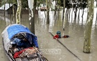 People in Kurigram seek shelter after floodwaters fill their homes.