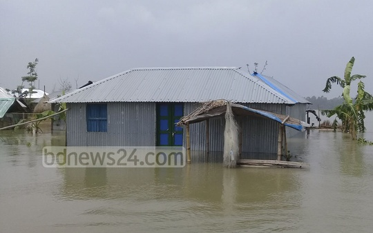 Large swathes of areas in Kurigram went underwater due to the swelling up of rivers Dharala and Brahmaputra.