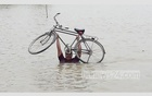 This picture tells the flood situation of Sadar Upazila in Naogaon where Atrai river burst its bank and inundated the vast area. The photo of the man with his precious bicycle was taken on Friday.