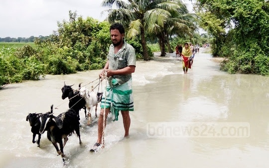 ​​Th​is is​ N​o​ria-Jazira road in Shariatpur after the rise of water level in the Padma and Kirtankhola rivers. ​​Our correspondent took this picture on Friday.​