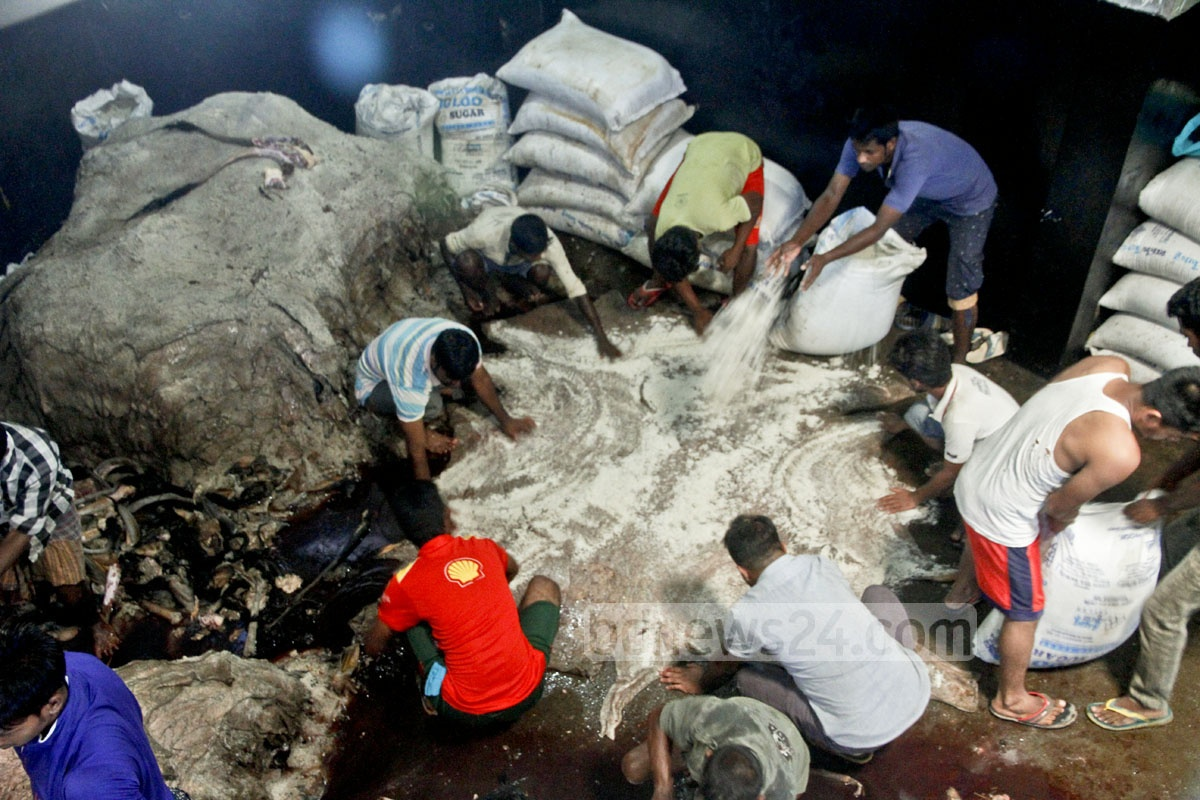 Workers applying salt on rawhides for preservation at Posta in Old Dhaka a day after the Eid. Photo: tanvir ahammed