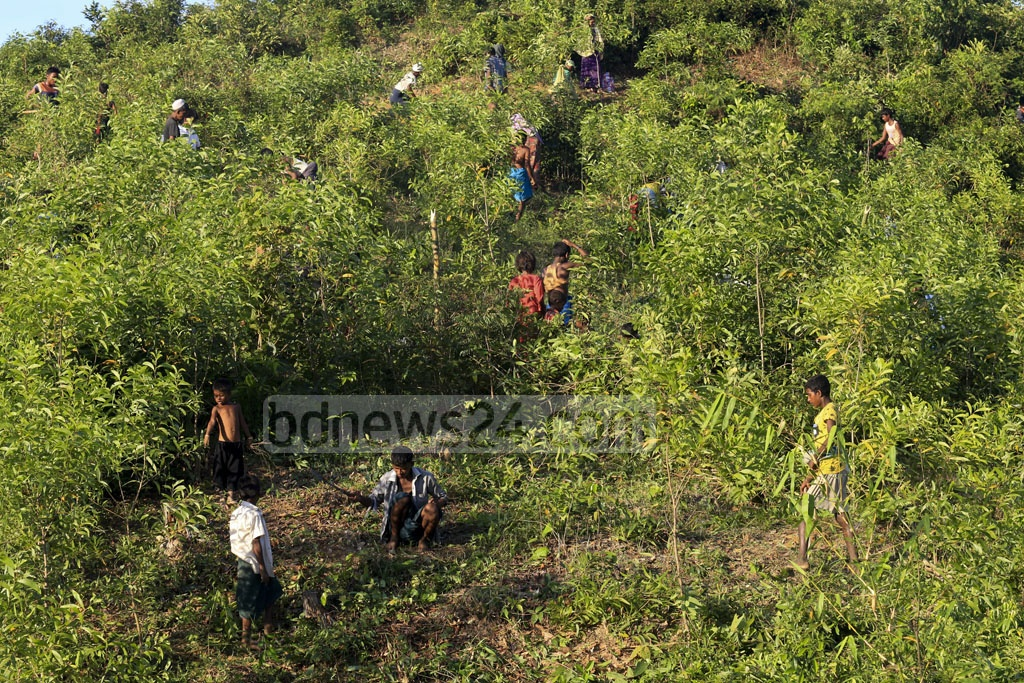 Newly arrived Rohingya refugees are cleaning bushes on a hill at Palongkhali in Ukhia, Cox's Bazar to build new shelters. Photo: muhammad mostafigur rahman