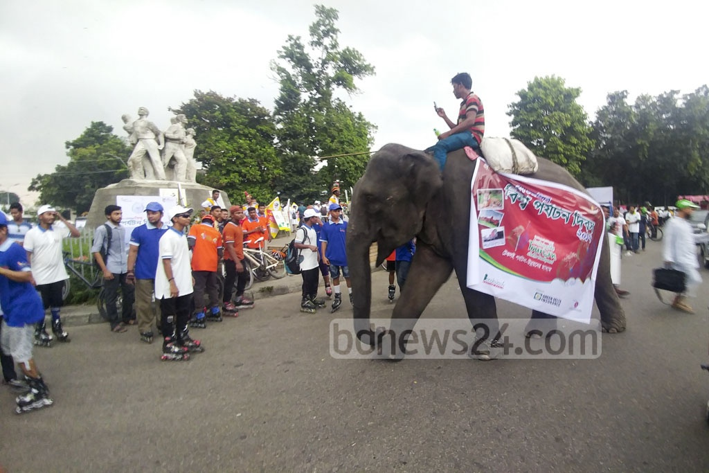 An elephant takes part in a World Tourism Day procession in Dhaka on Wednesday.
