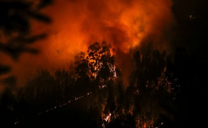 Smoke and flames from a forest fire are seen near Lousa, Portugal, Oct 16, 2017. Reuters