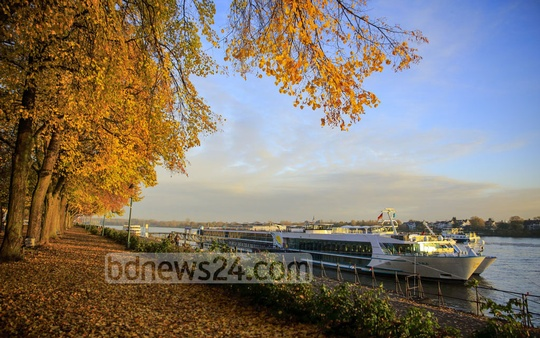 In Europe and North American countries, this is called 'fall colours' when the deciduous trees paint a large canvas in nature for the people to come out and enjoy ahead of winter. The photo is taken from Bonn in Germany by the river Rhine. Photo: mostafigur rahman