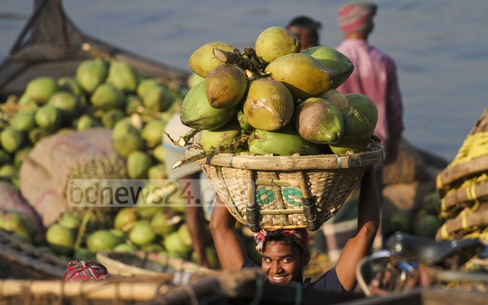 Workers unload green coconut from a boat from Barisal and carry those to the wholesale fruit market at Wiseghat in Dhaka. Green coconut sells at Tk 25 to 35 here, while the retail price is Tk 40 to 60. Photo: dipu malakar