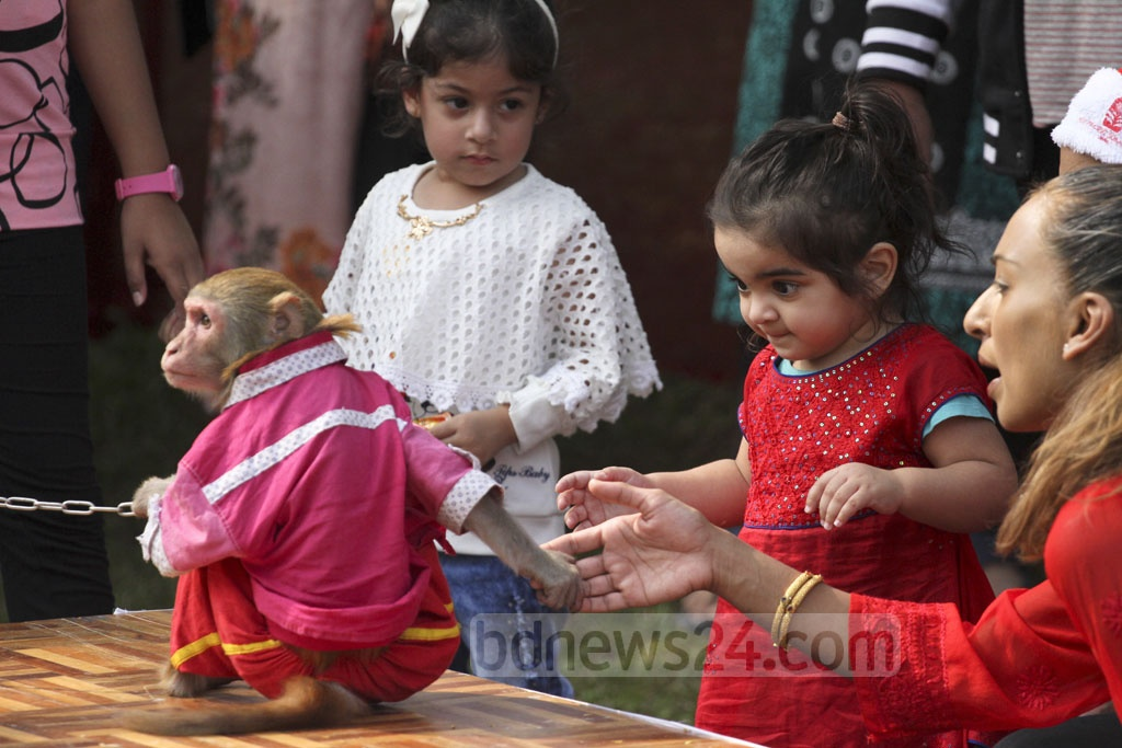 A Monkey Performs At A Christmas Fair At A Dhaka Hotel On Monday Photo