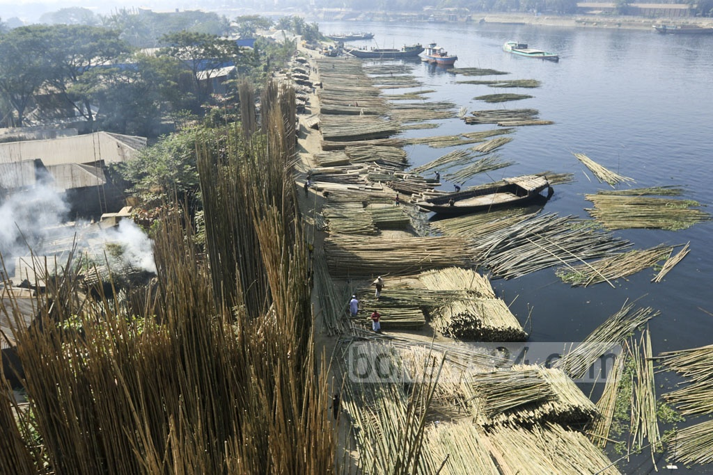 A large wholesale market of bamboo has been set up on the bank of the Shitalakkhya in Narayanganj's Tarabo.