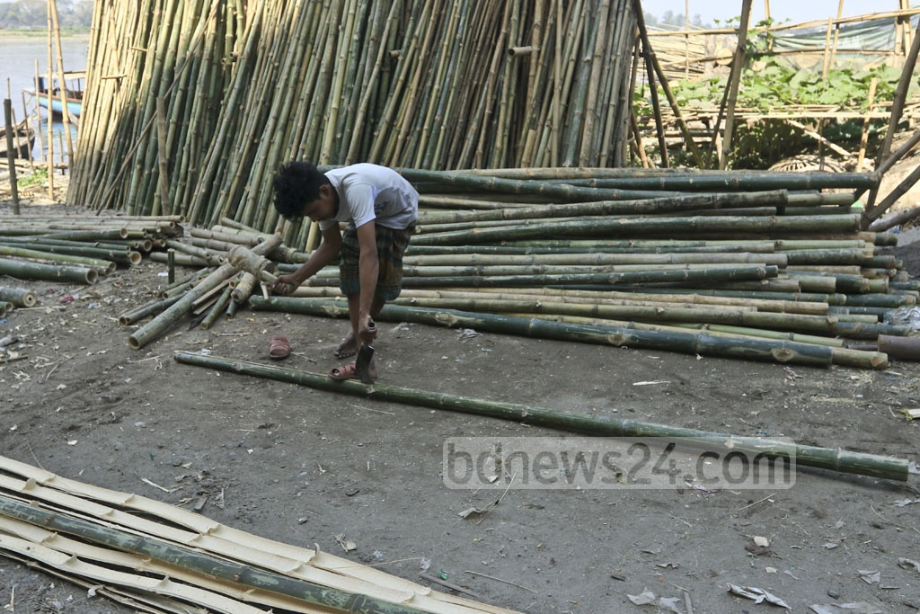 A worker cutting bamboos for a scaffold.