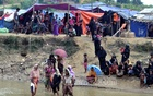 Myanmar envoy says Rohingya return from Cox's Bazar will begin on Nov 15 as planned