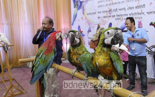 Visitors at an exhibition of birds at the Sher-e-Bangla Agricultural University in Dhaka on Friday. Photo: asif mahmud ove