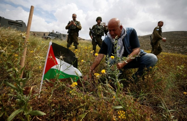A Palestinian man plants an olive tree during a protest against Jewish settlements and ahead of the 70th anniversary of Nakba, near Ramallah, in the occupied West Bank May 13, 2018. REUTERS