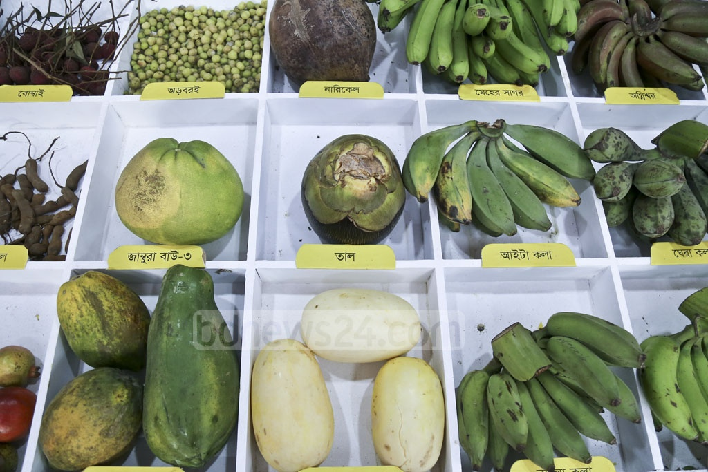 Fruits are on display on the first day of a three-day fruit fair organised by the Ministry of Agriculture on the Gias Uddin Milky Auditorium premises at Khamarbari in Dhaka on Friday.