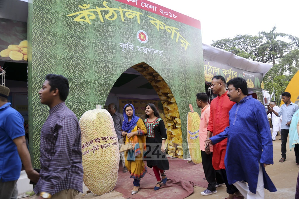 The three-day National Fruit Fair organised by the Ministry of Agriculture on the Gias Uddin Milky Auditorium premises at Khamarbari began in Dhaka on Friday.