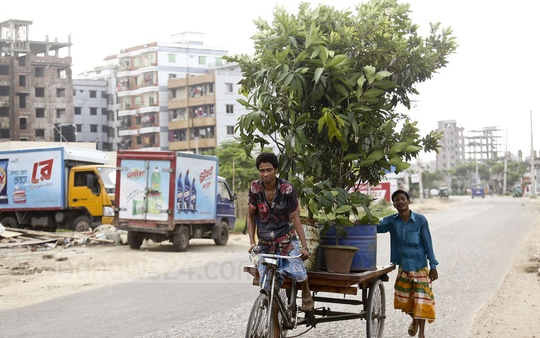 Two workers at the Meradia Nursery transport potted plants in Dhaka on Thursday. People use plants to freshen up their homes, balconies and roofs as the monsoon season sets in. Photo: Mahmud Zaman Ovi