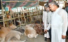 Fisheries and Livestock Minister Narayon Chandra Chanda