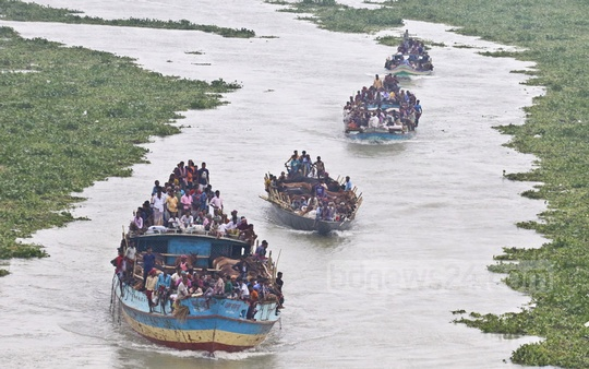 Traders are hauling cows by boat to the markets. This photo was taken from the Bangladesh-China Friendship Bridge on Monday. Photo: Abdullah Al Momin