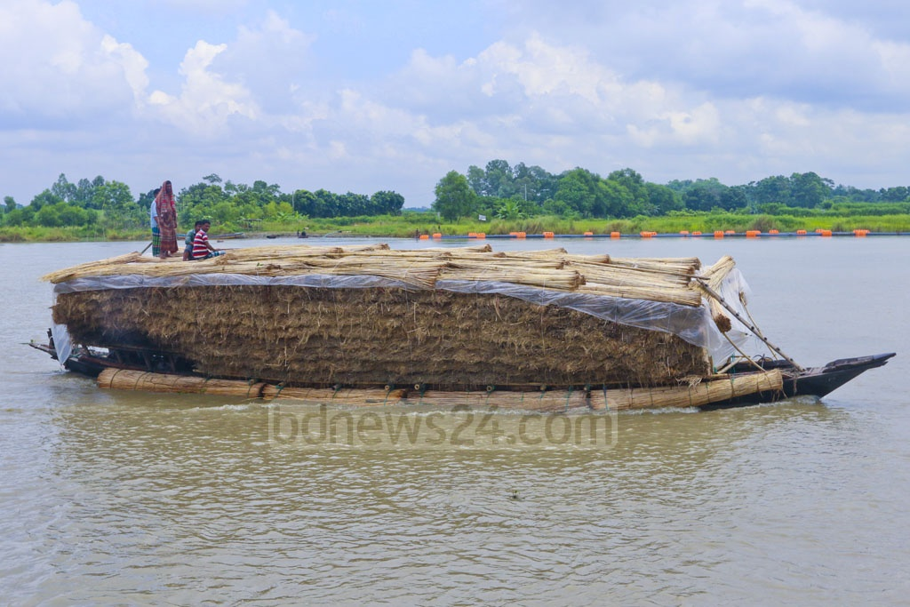 A boat on the Kaliganga river in Dhaka's Keraniganj is loaded with jute sticks that were once used as fuel and fencing material. Now particle board is made of jute sticks and its ashes are exported. Photo: Abdullah Al Momin