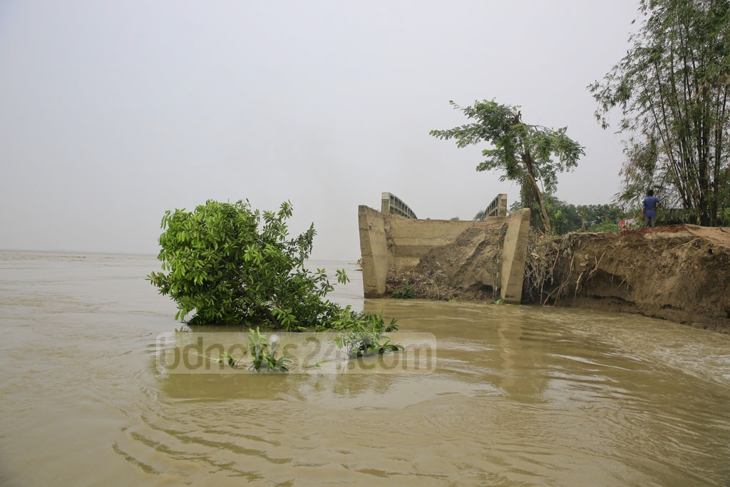 The Naria-Sureshwar Road has sunk into the Padma River, leaving only a bridge to bear witness. The bridge will likely sink anytime soon. Photo: Mostafigur Rahman