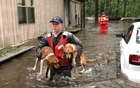 Members of Coast Guard Shallow-Water Response Boat Team 3 help pets stranded by floodwater caused by Hurricane Florence near Riegelwood, North Carolina, US Sept 16, 2018. US Coast Guard Handout via Reuters