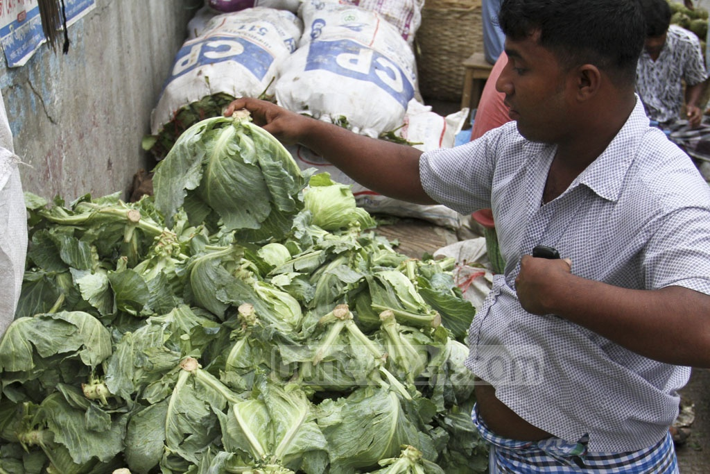 Winter vegetables, such as the cabbage, have begun arriving in Dhaka markets, including Shyambazar. Photo: Asif Mahmud Ove