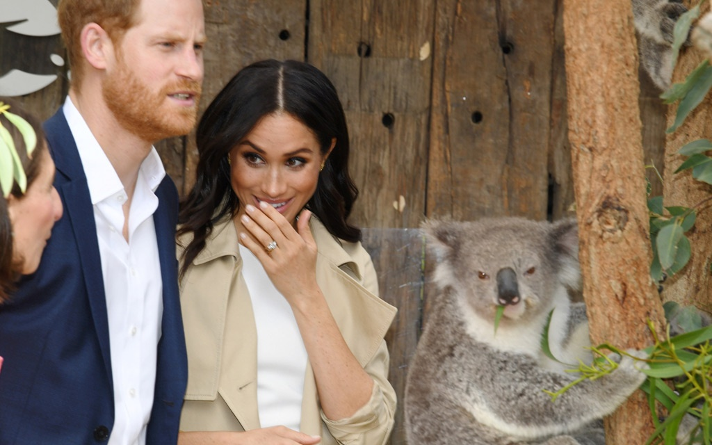 Britain's Prince Harry, the Duke of Sussex, and his wife Meghan, theDuchess of Sussex, are seen meeting a Koala in Sydney