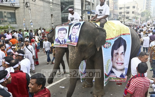 An aspirant brought elephants with the procession of his supporters to buy the BNP's nomination form at its Naya Paltan headquarters in Dhaka on Tuesday. Photo: Abdullah Al Momin