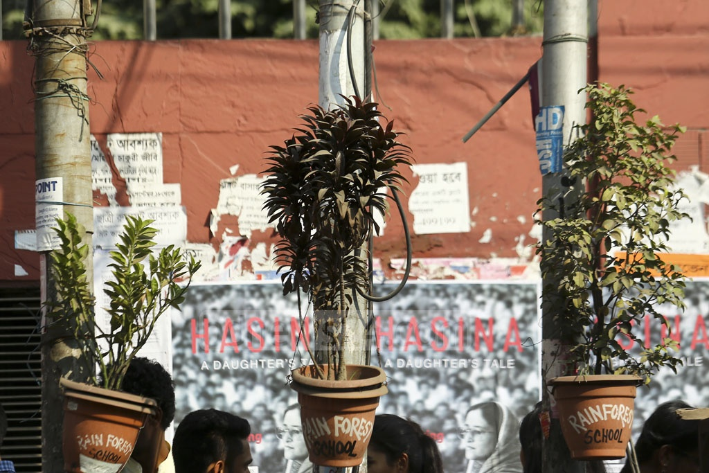 Vases of flowering plants are tied to the electricity poles in Bakshibazar. Photo: Mahmud Zaman Ovi
