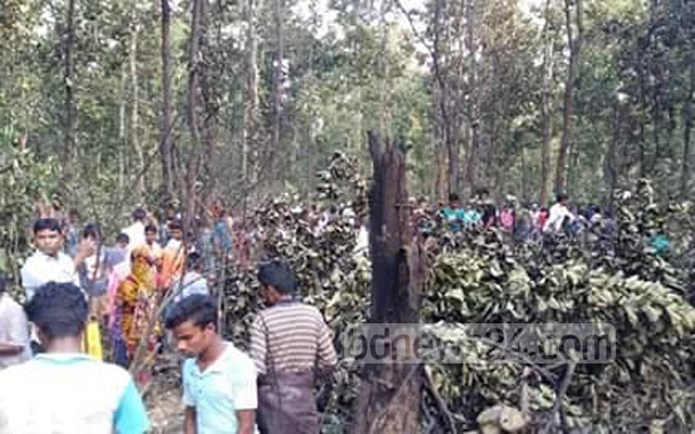 A pilot dies after a training aircraft of Bangladesh Air Force crashes in Tangail's Madhupur on Friday.