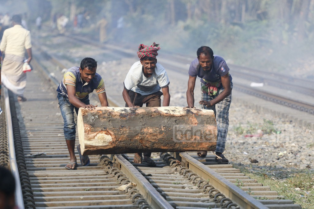 Workers move the trunks of felled trees across the railway tracks in Dhaka. Photo: Abdullah Al Momin