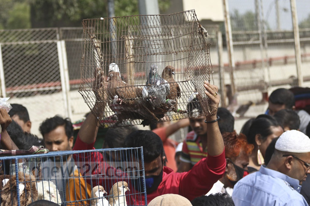 A buyer leaves the Kaptanbazar market with pigeons. Photo: Abdullah Al Momin