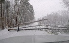 About 300,000 without power in US southeast after storm