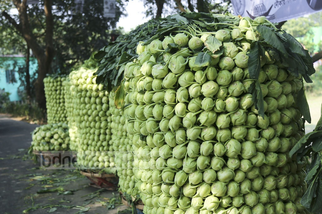 Turnips are stacked by the side of the road on their way to market. Photo: Mahmud Zaman Ovi