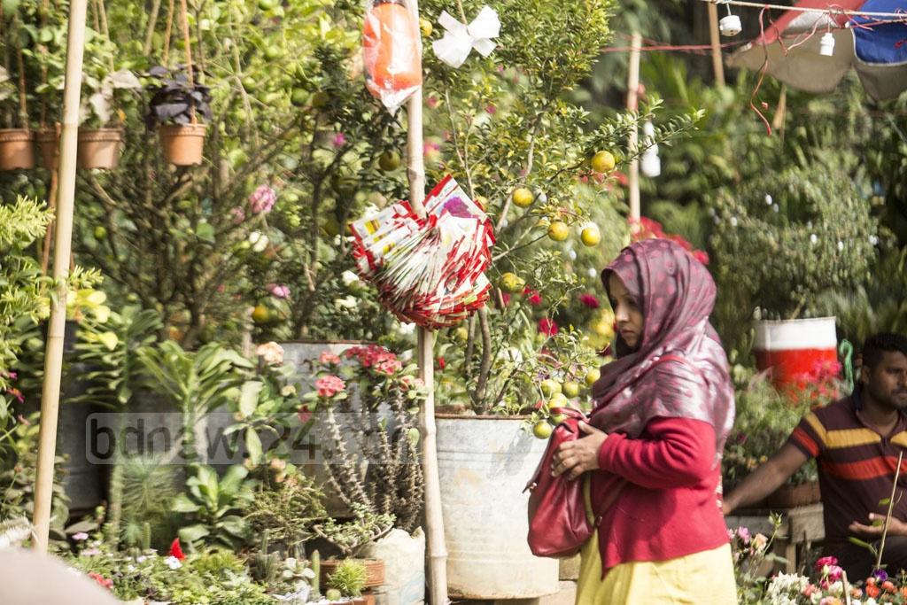 A trader attends to his plants. A customer browses the plants on offer. Photo: Mahmud Zaman Ovi