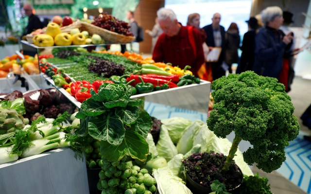 Vegetables are pictured at the opening day of the International Green Week (Internationale Gruene Woche) agriculture and food fair in Berlin, Germany, January 18, 2019. REUTERS/Fabrizio Bensch