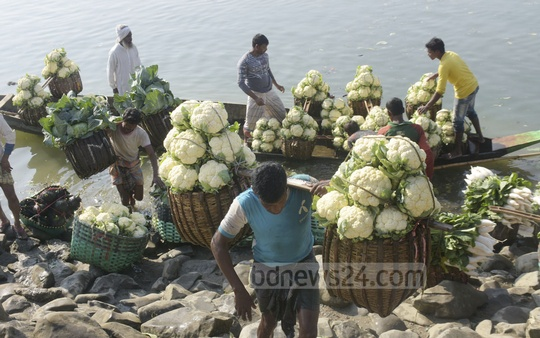A variety of winter vegetables are now available at the market at reasonable prices. Vegetables from all over Chattogram are brought to the Dohajari Railway station. Cabbages and cauliflower are sold at Tk 170 to Tk 220 per basket. Photo: Suman Babu