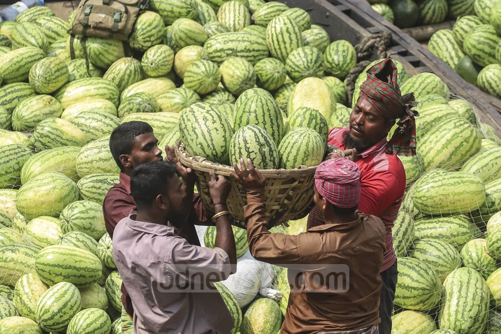 Workers carrying watermelons from boats at Waizghat pier in Dhaka on Sunday to Badamtoli wholesale market where each watermelon is being sold for Tk 80 to Tk 400. Photo: Abdullah Al Momin