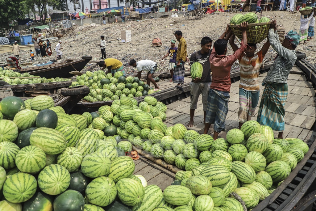 Watermelons being brought to Waizghat pier in Dhaka on Sunday. These fruits will be sold at the wholesale market at Badamtoli. Photo: Abdullah Al Momin