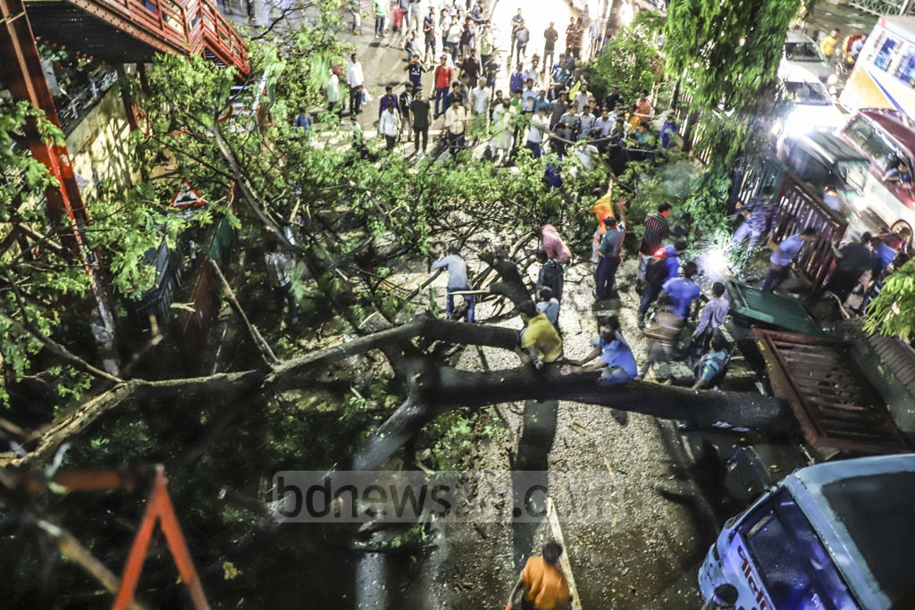 Traffic on a lane from Gulshan to Mohakhali halted for hours after a storm ripped up a tree in Dhaka on Tuesday evening. Photo: Abdullah Al Momin