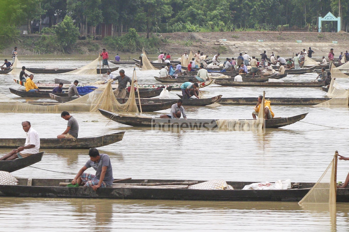 Fishermen collected fish eggs from South Asia's most abundant natural hatchery, the Halda river, in Chattogram from 9pm on Saturday to 6am on Sunday when the female fishes started to release the roes at the spawning season. Photo: Sumon Babu